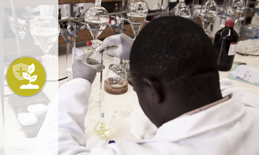Course Image Organisation and management of a laboratory (Intermediate level)